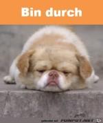 Bin-durch.jpg auf www.funpot.net