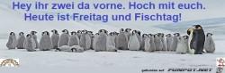 Fischtag.jpg auf www.funpot.net