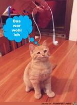 Das-war-wohl-ich.jpg auf www.funpot.net
