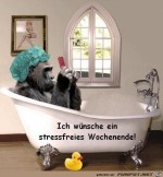 Ich-wünsche-ein-stressfreies-Wochenende.jpg auf www.funpot.net