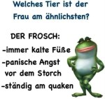 Der-Frosch.jpg auf www.funpot.net