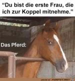 Da-guckt-das-Pferd-dann-doch-sehr-skeptisch.png auf www.funpot.net