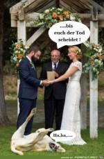 Lustig.jpg auf www.funpot.net