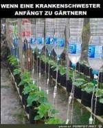 Gärtnerei.jpg auf www.funpot.net