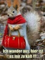 ich-wander-aus........jpg auf www.funpot.net