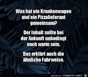 Was-haben-ein-Krankenwagen-und-ein-Pizzalieferant-gemeinsam?.jpg auf www.funpot.net
