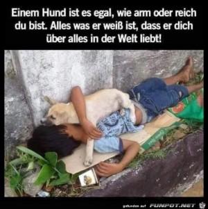 einem-Hund-ist-es-egal-wie-arm-oder-reich-du-bist....jpg auf www.funpot.net