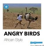 Angry-Birds.jpg auf www.funpot.net