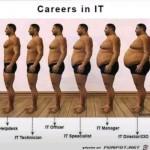 Karriere-in-der-IT.jpg auf www.funpot.net
