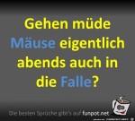 Mäuse-gehen-in-die-Falle.jpg auf www.funpot.net