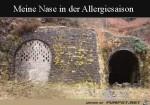 Allergie-Nase.jpg auf www.funpot.net
