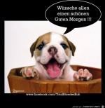 Wuensche-allen.png auf www.funpot.net