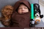 klein-Yoda.jpg auf www.funpot.net