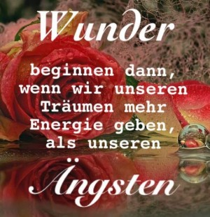 Wunder.jpg auf www.funpot.net