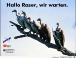 Hallo-Raser-.png auf www.funpot.net