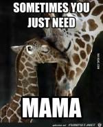 Mama.jpg auf www.funpot.net