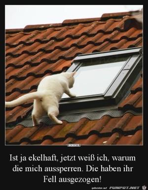 Tierischer-Spanner.jpg auf www.funpot.net