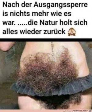 Die-Natur-holt-sich-alles-zurück.jpg auf www.funpot.net