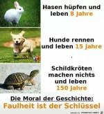 Die-Moral.jpg auf www.funpot.net