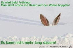 Ich-sehe-den-Frühling-schon-kommen.....jpg auf www.funpot.net