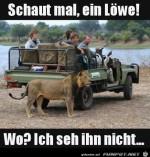 Wo-ist-der-Löwe?.jpg auf www.funpot.net