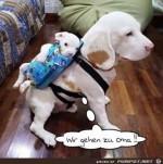 wir-gehen-zu-Oma.....jpg auf www.funpot.net