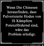 Die-Chinesen.png auf www.funpot.net