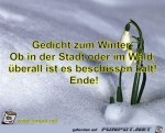 Gedicht-zum-Winter:Ob-in-der-Stadt-oder-im-Wald,überall.jpg auf www.funpot.net