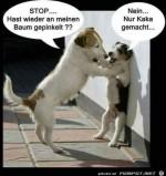 stop-...-Hast-wieder.jpg auf www.funpot.net