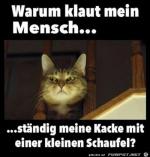 Schwere-Detektivarbeit.png auf www.funpot.net
