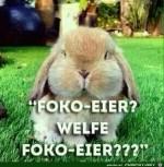 Welche-Schoko-Eier.jpg auf www.funpot.net