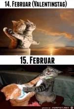 14.-Februar-Valentinstag.jpg auf www.funpot.net