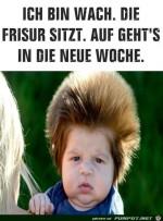 Die-Frisur-sitzt.jpg auf www.funpot.net