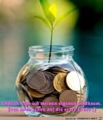 Junger-Geldbaum.jpg auf www.funpot.net