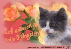 tolle-Pfingsten.jpg auf www.funpot.net