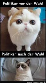 Politiker.......jpg auf www.funpot.net