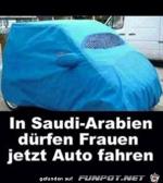 Auto-Burka.png auf www.funpot.net
