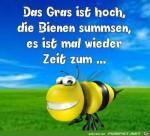 Die-Bienen-sumsen.jpg auf www.funpot.net
