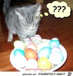 Was-ist-das?.jpg auf www.funpot.net
