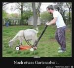 Gartenarbeit.jpg auf www.funpot.net