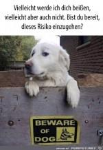 Gefährlicher-Hund.jpg auf www.funpot.net