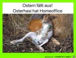 Ostern-im-Home-Office.jpg auf www.funpot.net