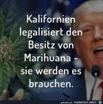 Kalifornien-legalisiert.......jpg auf www.funpot.net