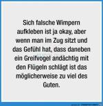 Falsche-Wimpern-aufkleben.jpg auf www.funpot.net