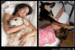 Schlafen-im-Traum-und-in-Wirklichkeit.jpg auf www.funpot.net