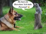 Hund-und-Katz......jpg auf www.funpot.net