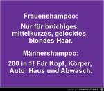Shampoo.jpg auf www.funpot.net