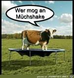 Wer-mag-einen-Milchshake?.jpg auf www.funpot.net