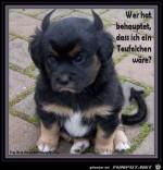 Teufelchen.jpg auf www.funpot.net
