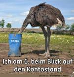 Kopf-in-den-Sand.png auf www.funpot.net